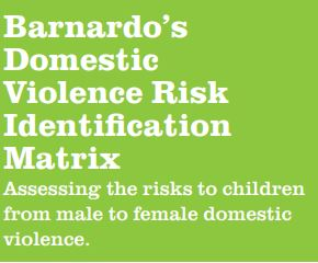 Barnardo's Domestic Violence Risk Identification Matrix graphic. Lime green with white text.