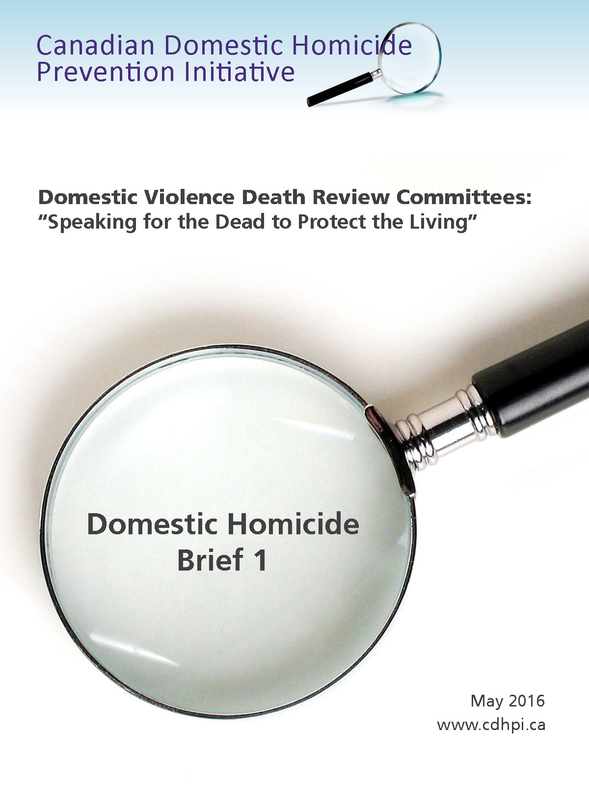 Logo with magnifying glass for Canadian Domestic Homicide Prevention Initiative