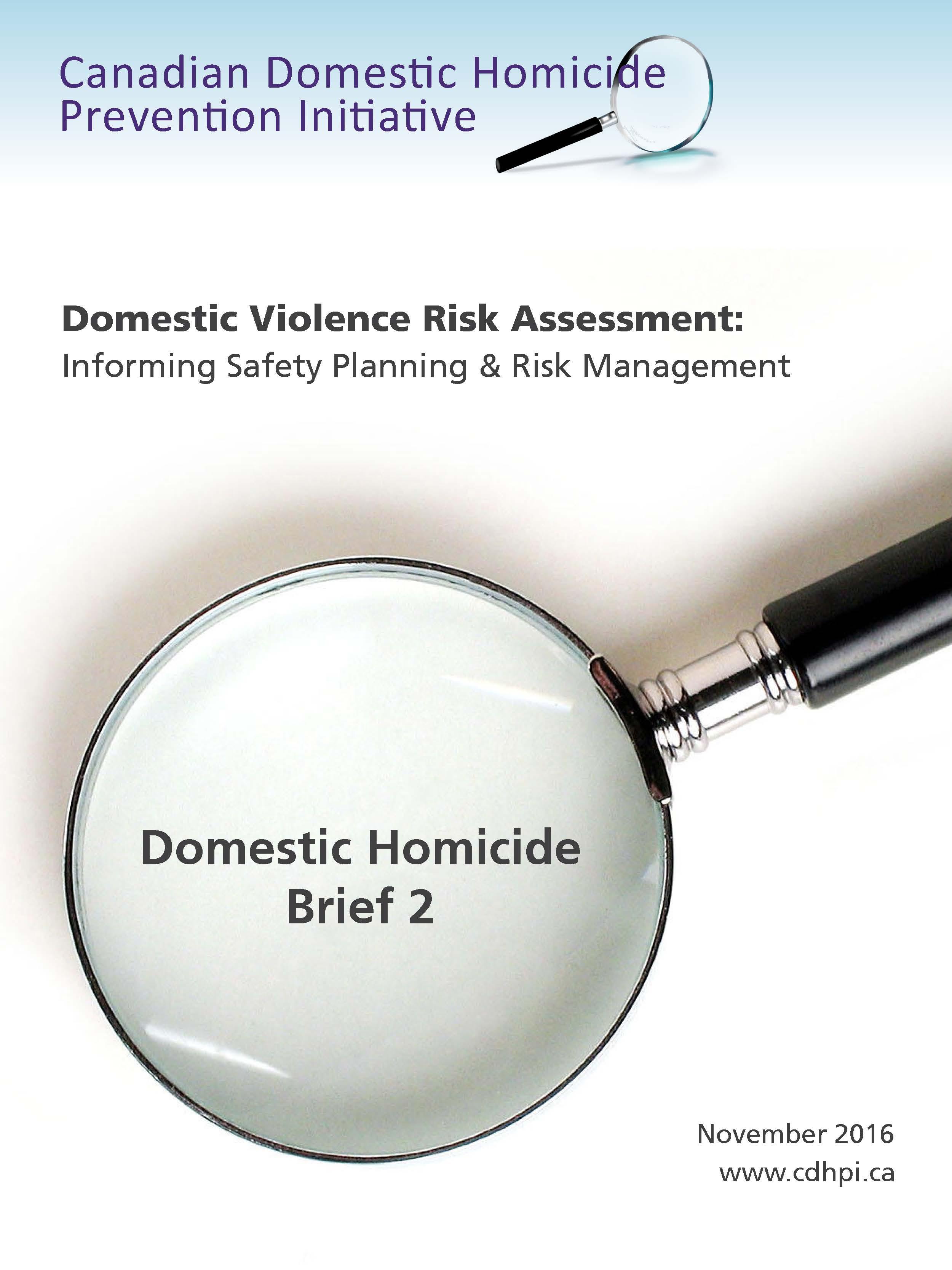 Domestic Violence Risk Assessment: Informing Safety Planning & Risk Management Report Cover