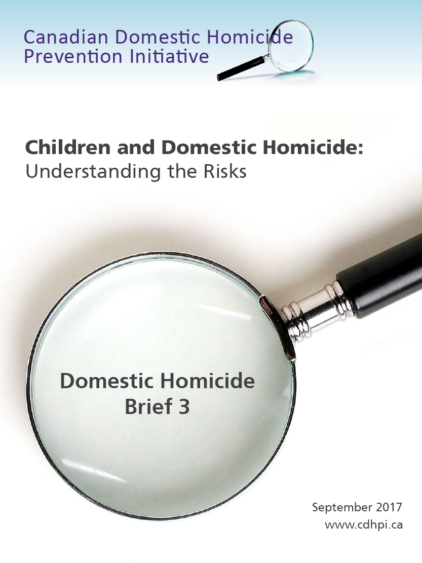 Brief 3: Children and Domestic Homicide: Understanding the Risks cover page