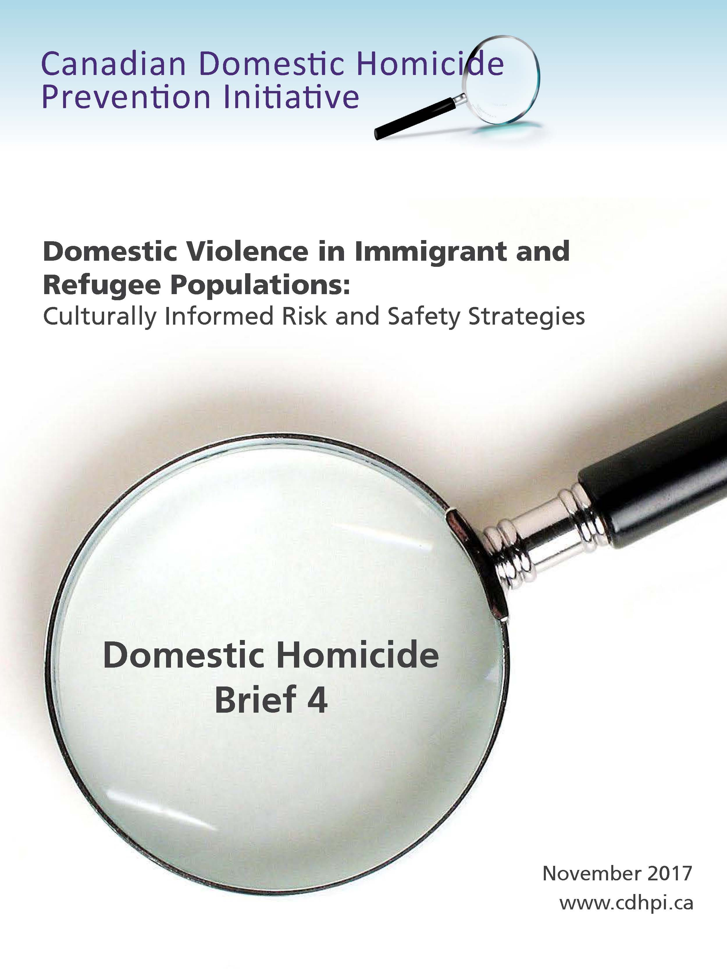 Brief 4: Domestic Violence in Immigrant and Refugee Populations - Culturally-Informed Risk and Safety Strategies cover page