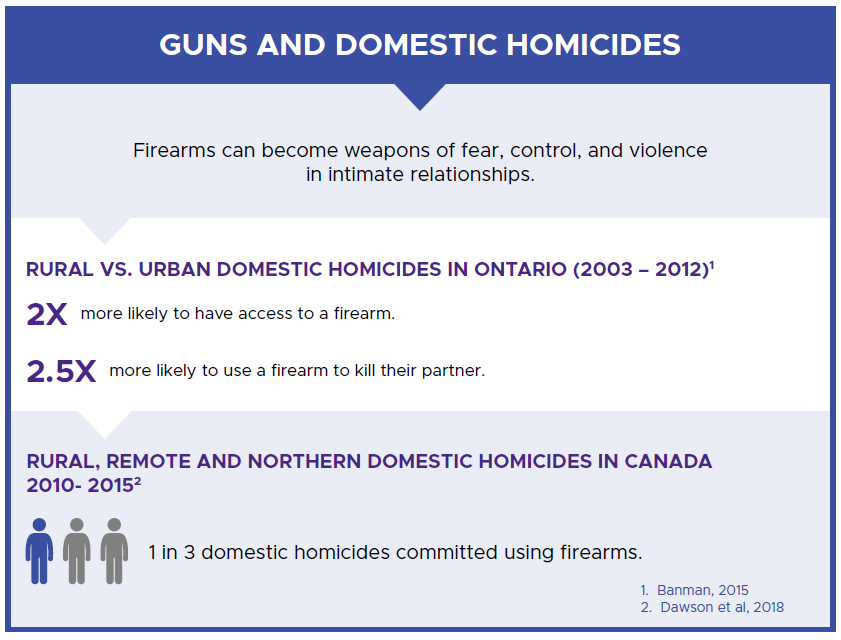 Guns and Domestic Homicides Infographic
