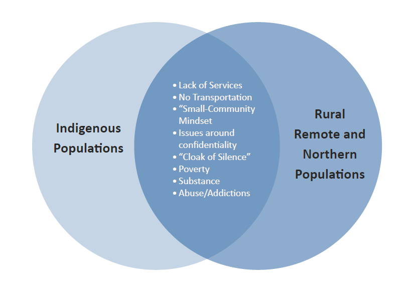 Figure 4. Diagram of barriers to service between Indigenous populations and rural, remote, and northern populations.