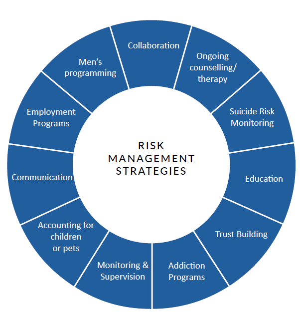 Figure 2. Risk Management Strategies